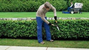 Pflege von Grünanlagen, Winterdienst - grünanlagen01 300x168